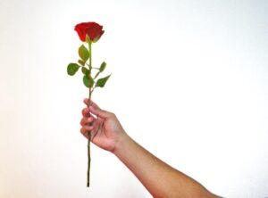 פשוט לי עם רלי - ורד לאהובתי