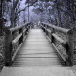 פשוט לי עם רלי - גשר הסליחה